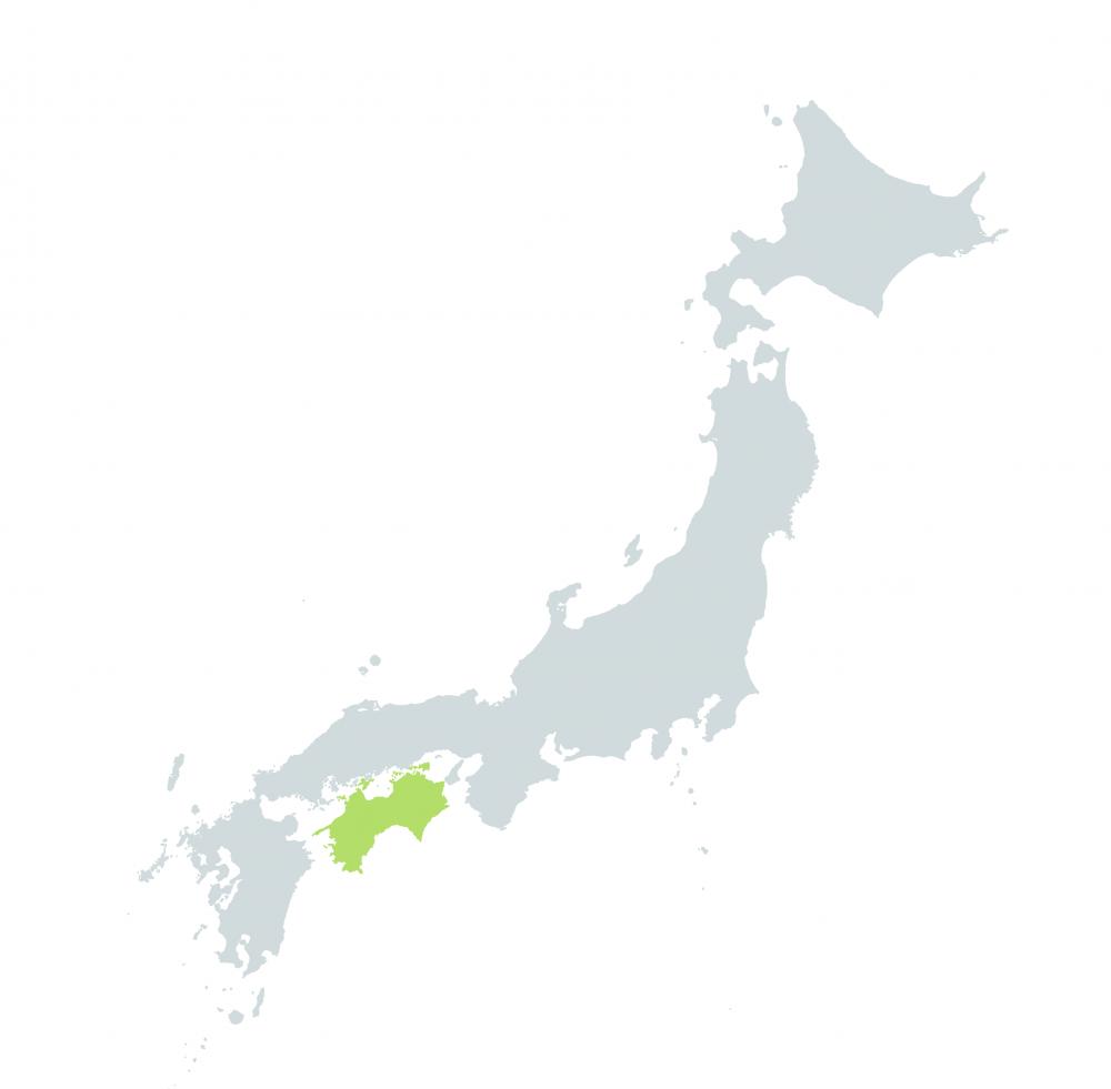 All Shikoku Pass
